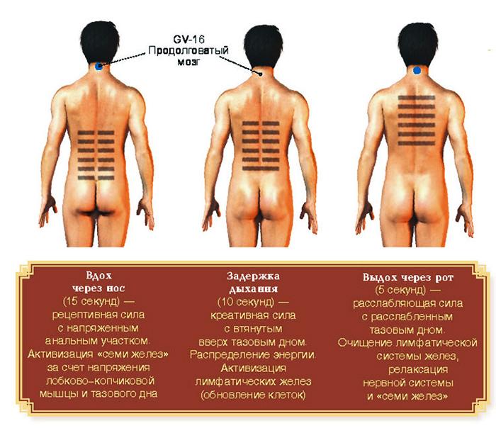 Опущение стенок влагалища  операция лечение степени