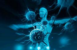 regeneratsiya-immunitet-i-rak-mini
