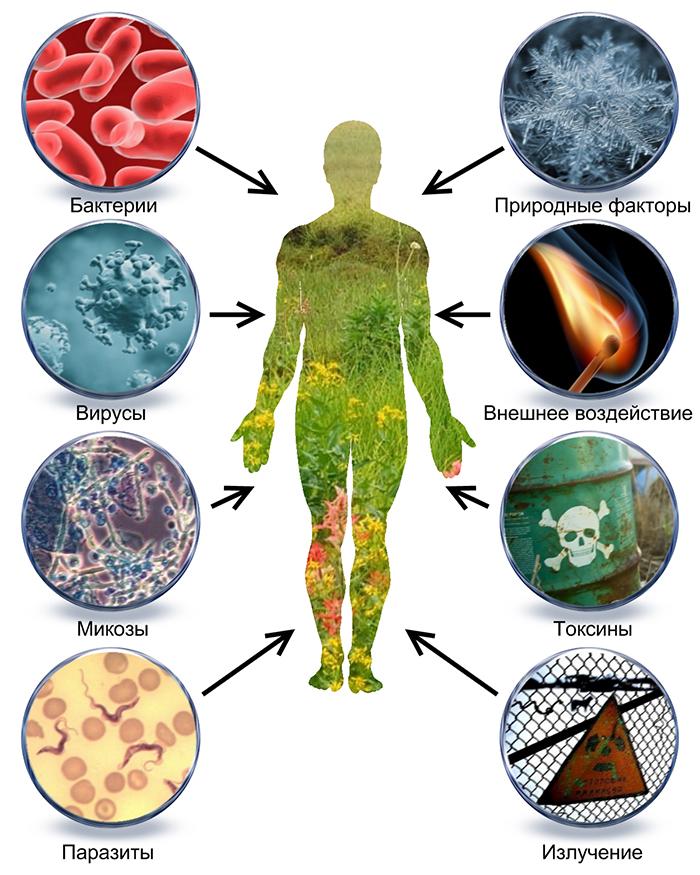 паразиты в организме человека симптомы фото лица